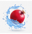 pomegranate in water splash fresh fruit realistic vector image vector image
