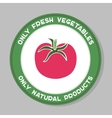 Tomato Label Design vector image