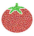 tomato vegetable composition of filled circles vector image