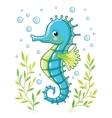 Cute cartoon Sea horse isolated vector image