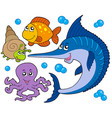 aquatic animals collection 3 vector image vector image