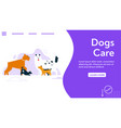 banner dogs care concept puppies of vector image