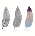 bird feather icon writing symbol fallen fluffy vector image vector image