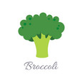 broccoli icon with title vector image