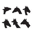 giraffe set silhouettes on white background vector image