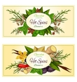 Hot spices and herbs banners set vector image