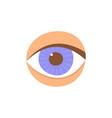 human eye in front the eye is like a sense organ vector image vector image