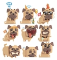 Little Pet Pug Dog Puppy With Collar Collection Of vector image vector image