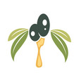 olive vegetable with dripping oil and leaves vector image
