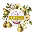 pear juice paper emblem over hand drawn pears vector image vector image