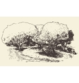 Romantic tree with bench drawn sketch vector image vector image