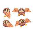 set of funny brown owls flat vector image vector image