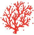 underwater ocean coral reef plant vector image