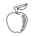 apple with leaf icon vector image vector image