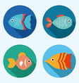 Fish design vector image