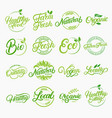 set of organic local fresh lettering logos vector image