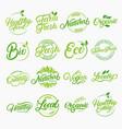set organic local fresh lettering logos vector image vector image