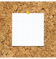 Sheet of paper into a cell on cork board vector image
