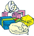 sleeping cat and gifts vector image