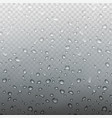 stock rain realistic water vector image vector image