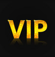 vip text on the black background vector image