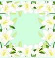 white lily border on green mint background vector image vector image
