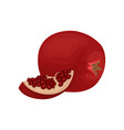 whole and small slice of fresh pomegranate tasty vector image vector image