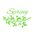 young spring and grass with small buds on poster vector image vector image