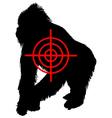Gorilla crosslines vector image vector image