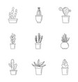 home cactus plant icon set outline style vector image vector image