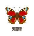 Realistic butterfly in flat style vector image vector image