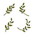 set green olive branch logo olive oil vector image