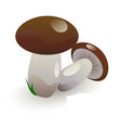 white mushrooms vector image vector image