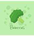 Broccoli Vegetable vector image