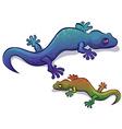 Gecko Salamander Lizard vector image