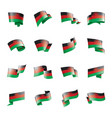 malawi flag on a white vector image
