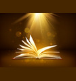 mystery open book with shining pages in brown vector image vector image