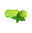 natural handmade soap half of juicy lime and vector image