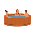smiling friends talking and bathing at wooden pool vector image vector image