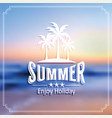 summer label vector image vector image