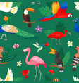 tropical birds exotic parrot or flamingo vector image