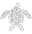 turtle doodle anti-stress vector image vector image