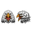 vintage colorful eagle heads concept vector image vector image