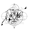 Wolf head low-poly sketch vector image vector image