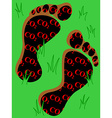 Carbon footprint on grass vector image vector image