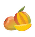 cartoon mango an a mango in a vector image vector image