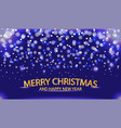 christmas and new year with a winter landscape wit vector image vector image