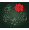 five roses vector image