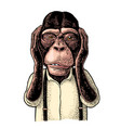 monkeys with hands on ears vintage black vector image vector image