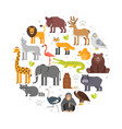 round composition of zoo animals icons vector image vector image